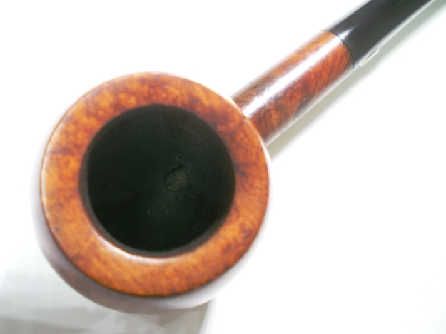 GBD_357_Pedigree_Finish (4)
