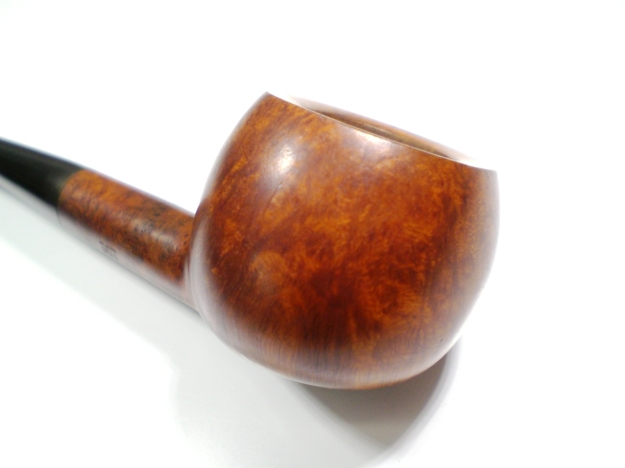GBD_357_Pedigree_Finish (6)