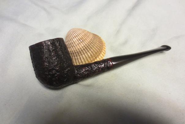 Shell25