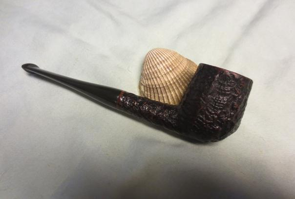 Shell26