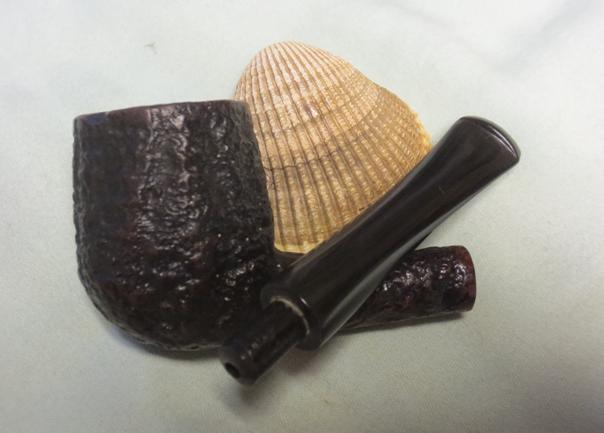 Shell29